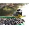 Τροφή για Πτηνά